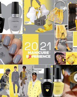 Pantone 2021 Colours